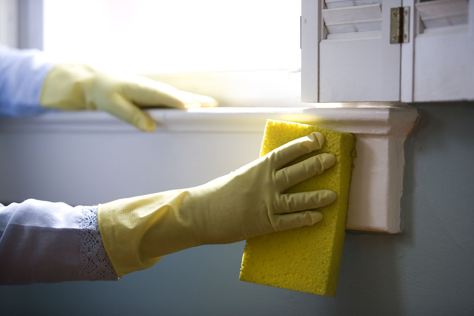 Get a deep clean in Kelowna with green products