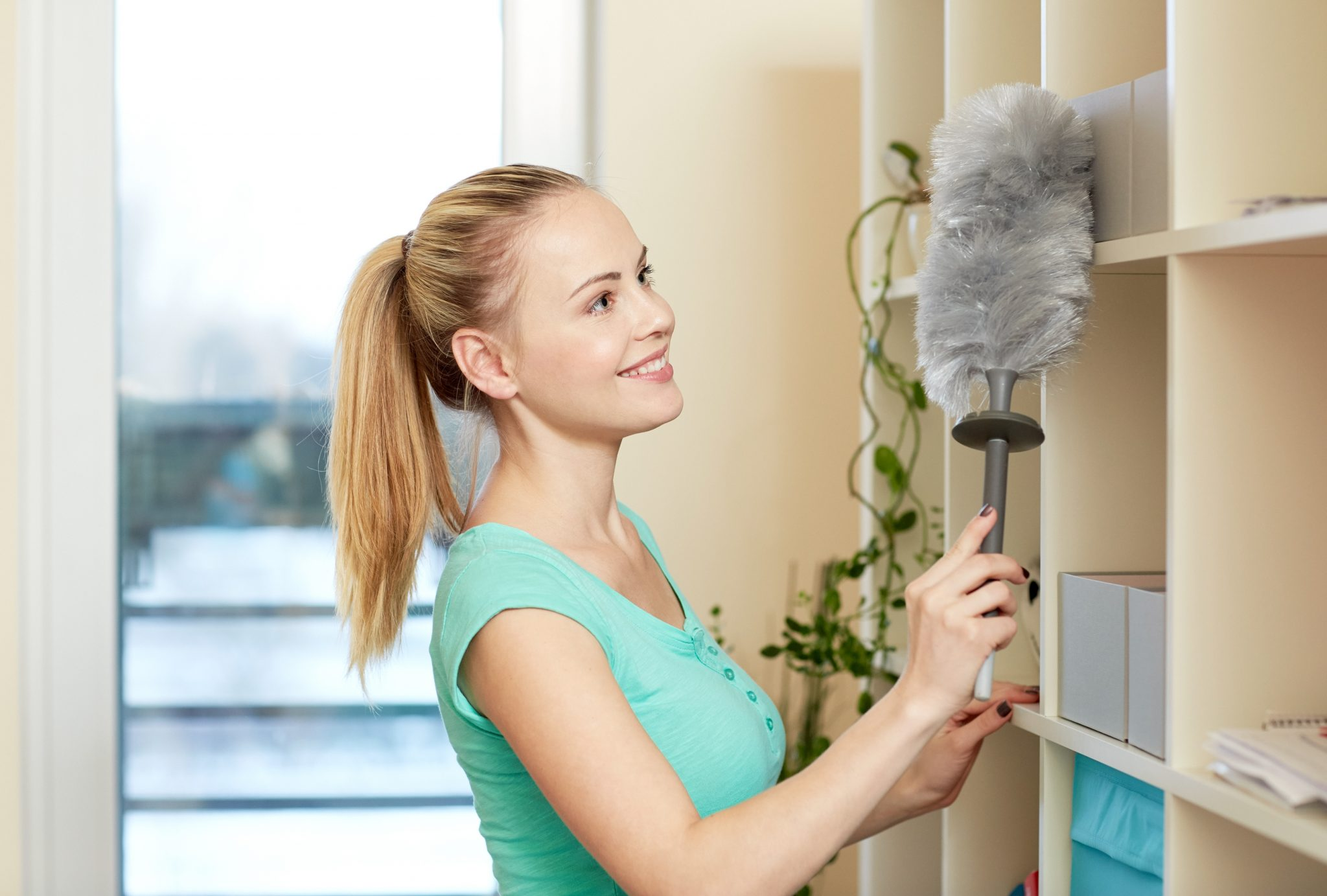 health-effects-dust-mites-kelowna-home-all-about-details-cleaning-company